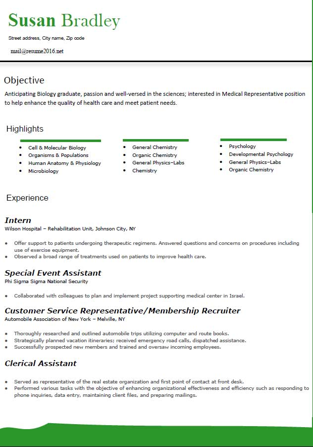 Template Of A Resume Free Resume Template Microsoft Word Free